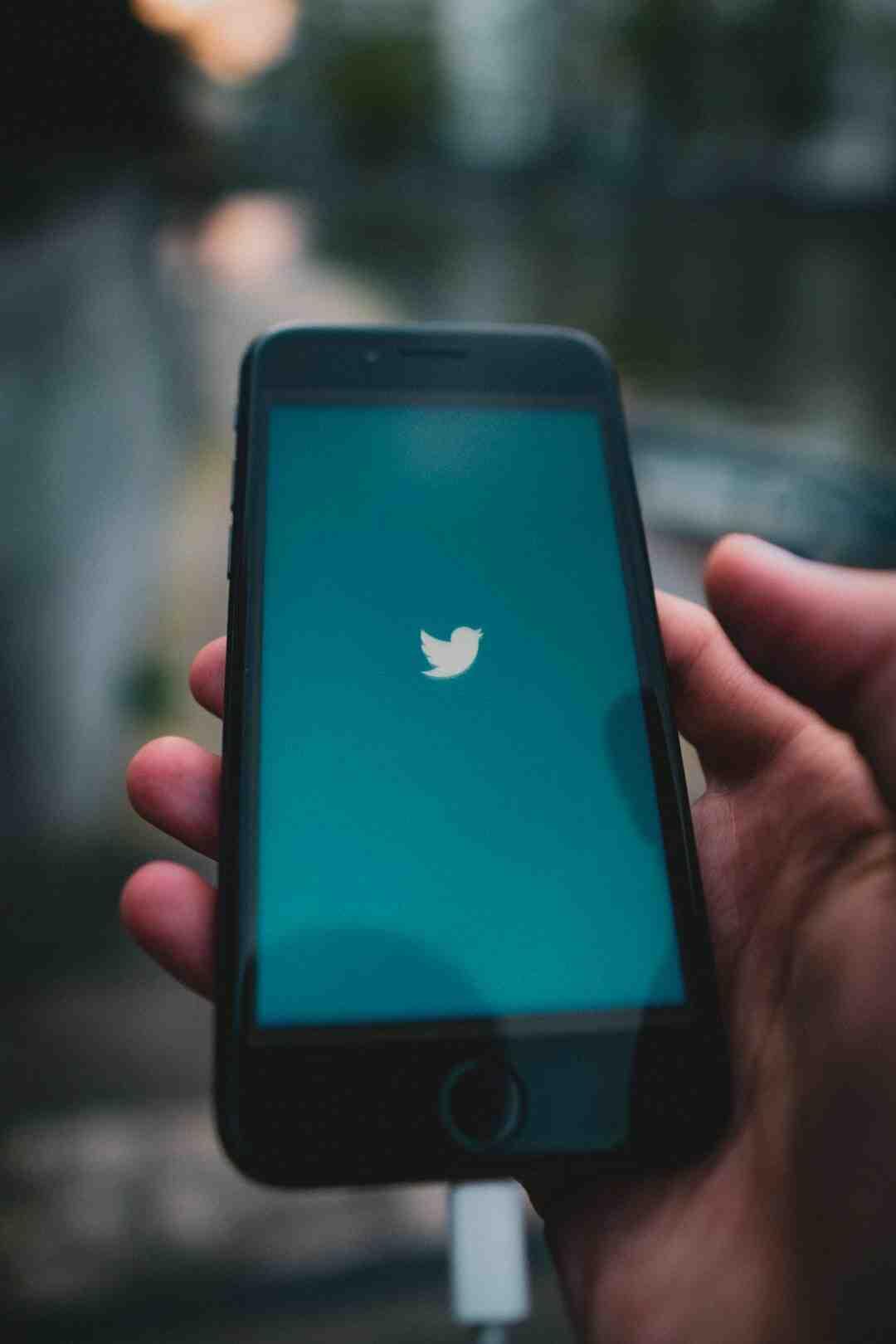 Comment avoir accès à son compte Twitter ?